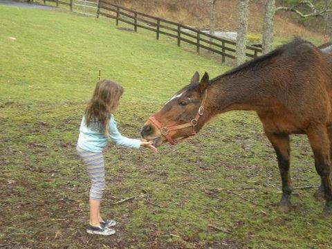 Feeding Hazel