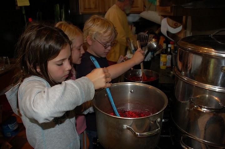 Raspberry Preserves 3